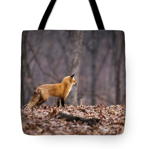 Tote Bag featuring the photograph Little Red Fox by Andrea Silies