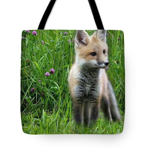 Little Red Fox Kit In The Field Tote Bag
