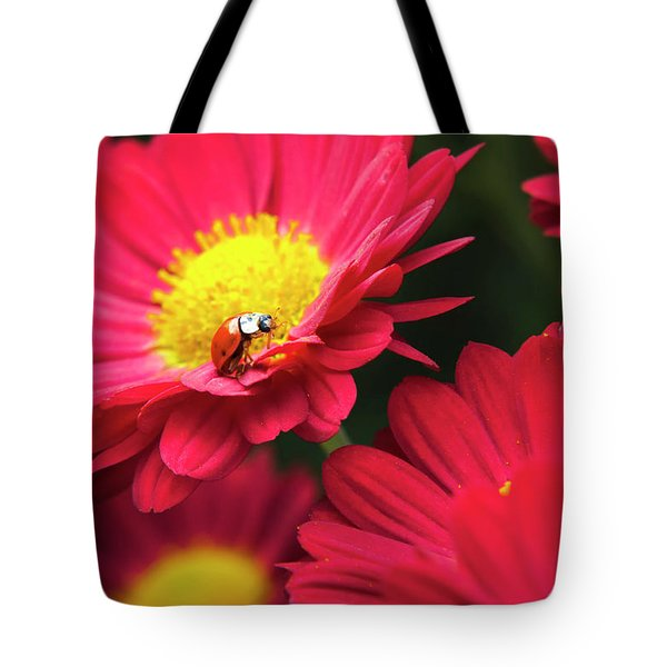 Little Red Ladybug Tote Bag by Christina Rollo