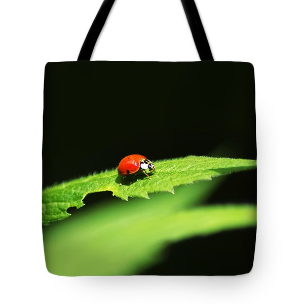 Little Red Ladybug On Green Leaf Tote Bag