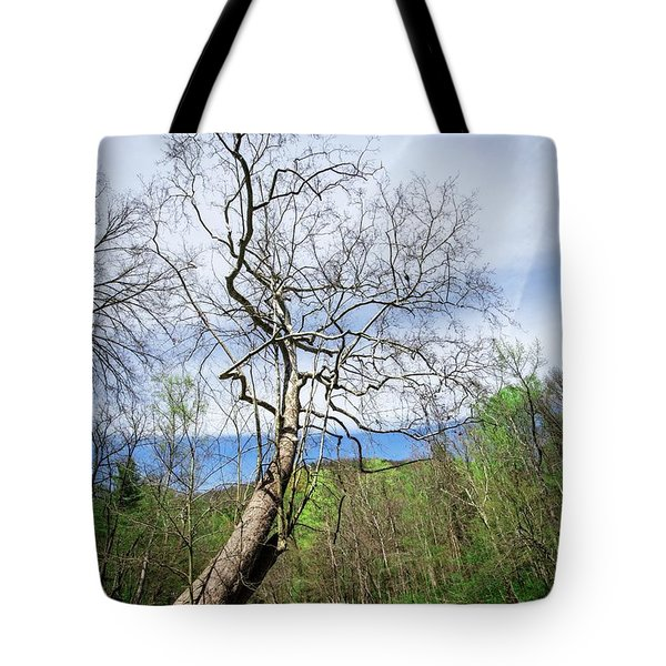 Tote Bag featuring the photograph Little River by Alan Raasch