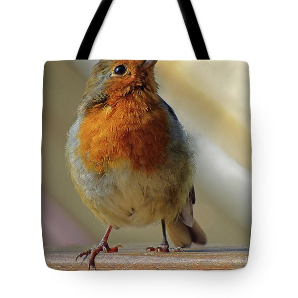 Little Robin Redbreast Tote Bag