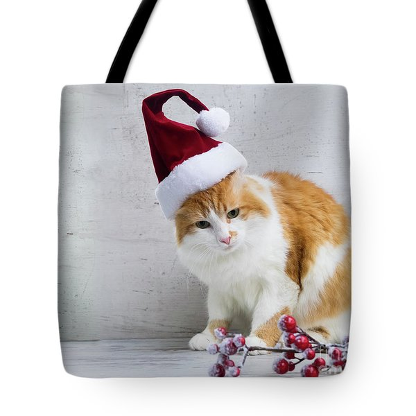 Little Santa Helper II Tote Bag by Anastasy Yarmolovich