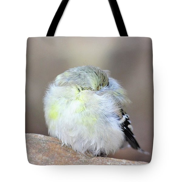 Little Sleeping Goldfinch Tote Bag