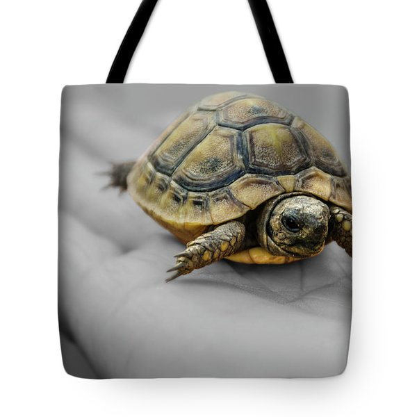 Little Turtle Baby Tote Bag