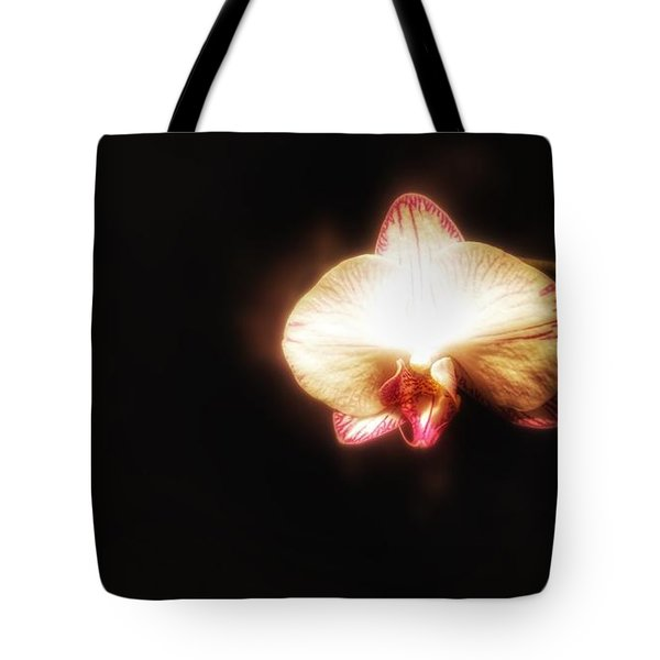 Tote Bag featuring the photograph Little Un by Isabella F Abbie Shores FRSA