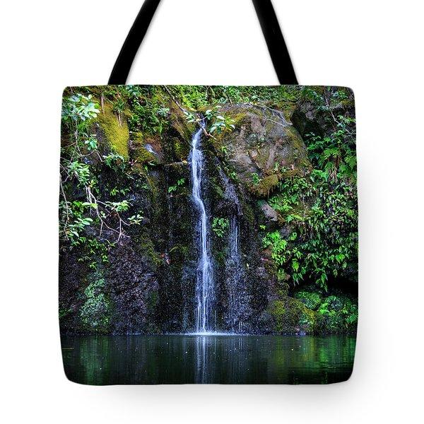 Little Waterfall Tote Bag