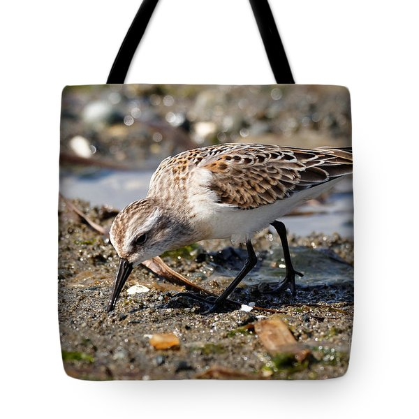Tote Bag featuring the photograph Little Western Sandpiper by Sue Harper