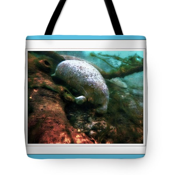 Little White Manatee Tote Bag
