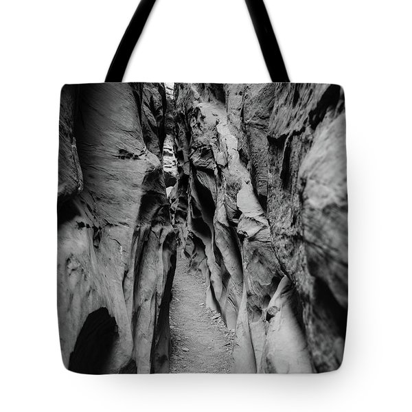Little Wild Horse Canyon Bw Tote Bag