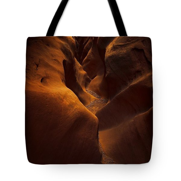 Little Wild Horse Tote Bag