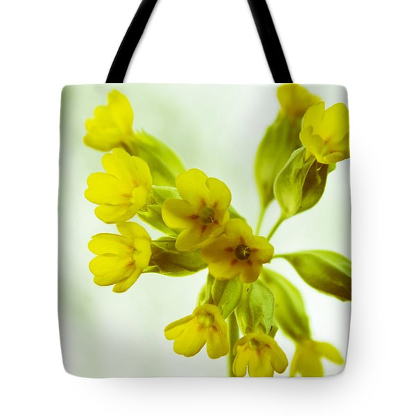 Little Yellow Flowers Close-up Tote Bag