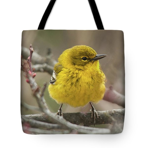 Little Yellow Tote Bag by Lara Ellis