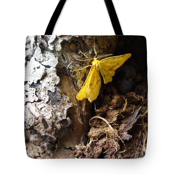 Little Yellow Moth Tote Bag by Peggy King