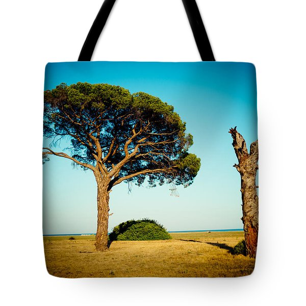 Live And Dead Tree At Seacoast Tote Bag