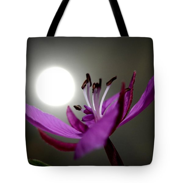 Live In The Light Tote Bag