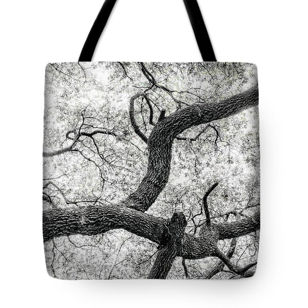 Live Oak Abstract 1 Tote Bag