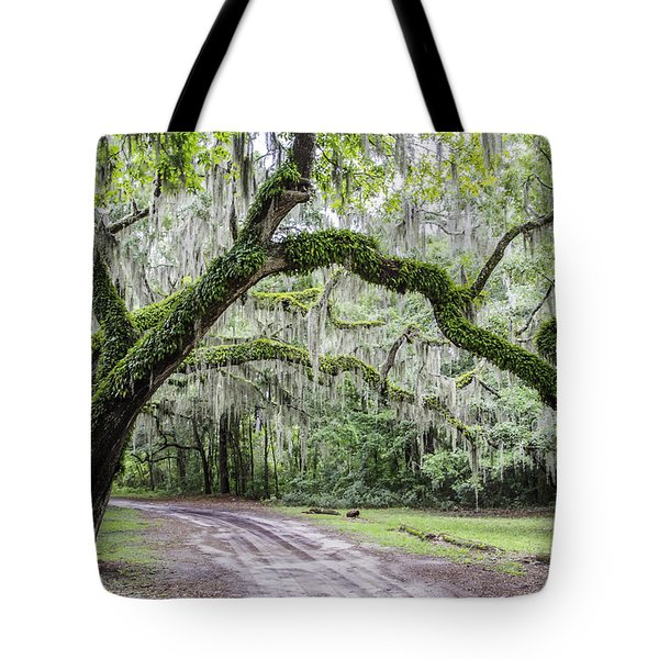 Live Oak Lane Tote Bag