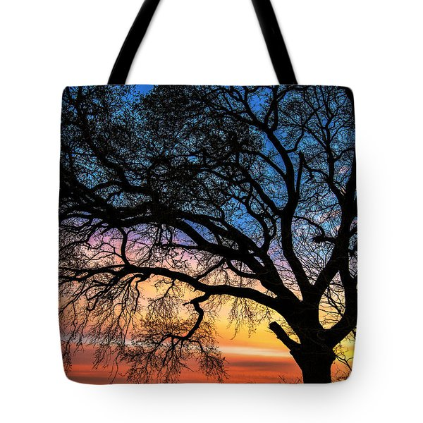 Live Oak Under A Rainbow Sky Tote Bag