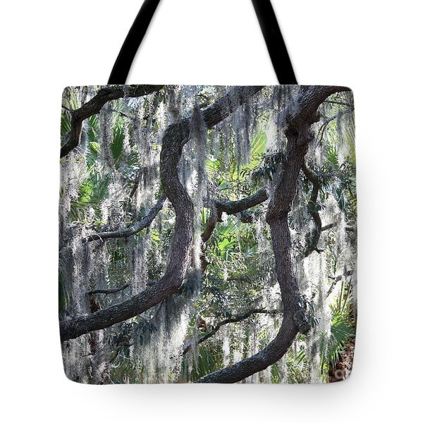 Live Oak With Spanish Moss And Palms Tote Bag by Carol Groenen