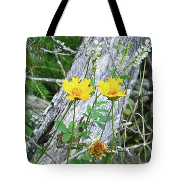 Tote Bag featuring the photograph Living And The Dead by Sally Sperry