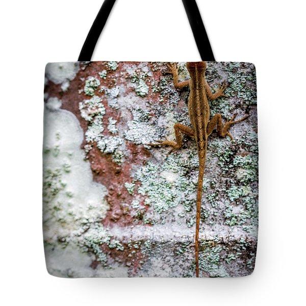 Lizard And Lichen On Brick Tote Bag