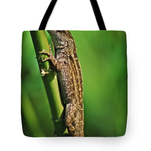 Lizard Tote Bag by Michael Peychich