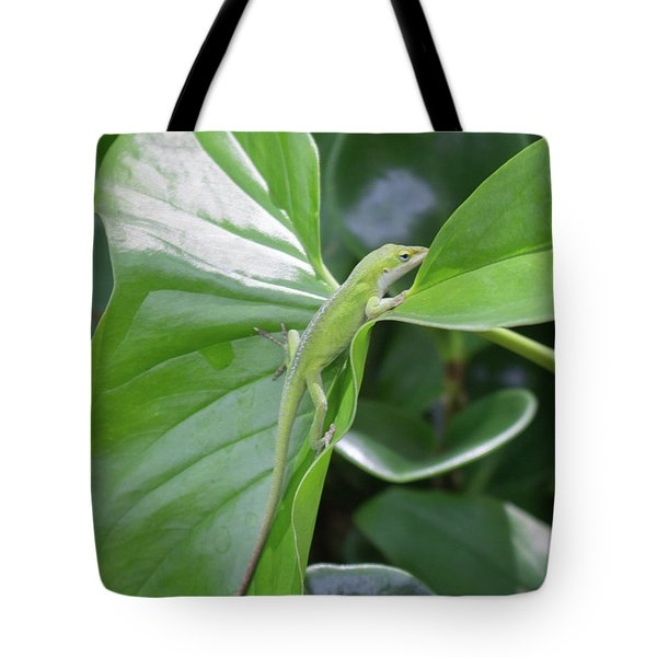 Lizard Waimea Trail Tote Bag