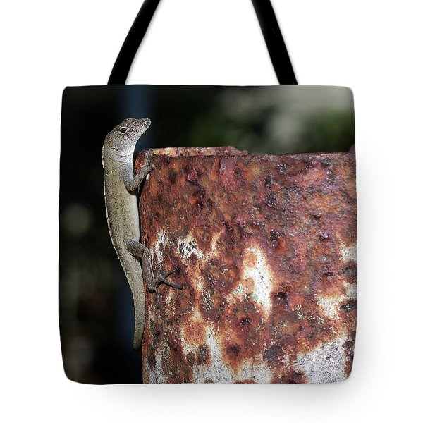 Tote Bag featuring the photograph Lizzy by Richard Rizzo