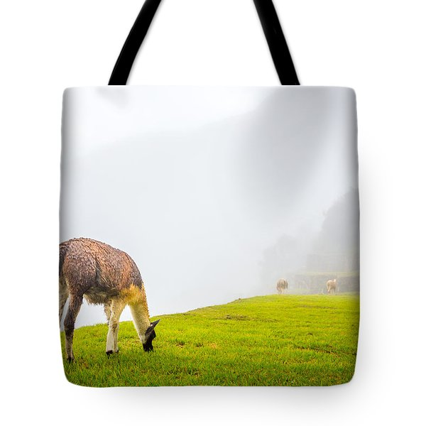 Tote Bag featuring the photograph Llama  by Gary Gillette
