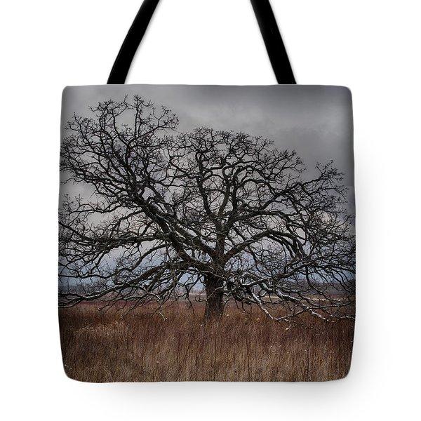 Loan Oak II Tote Bag