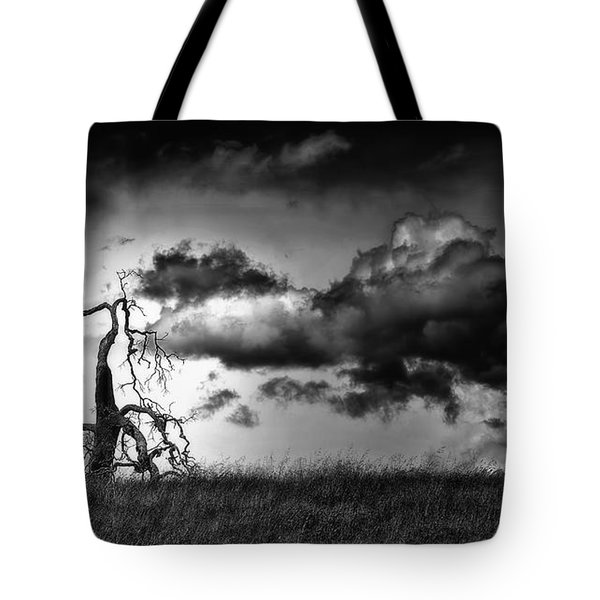 Loan Tree Tote Bag