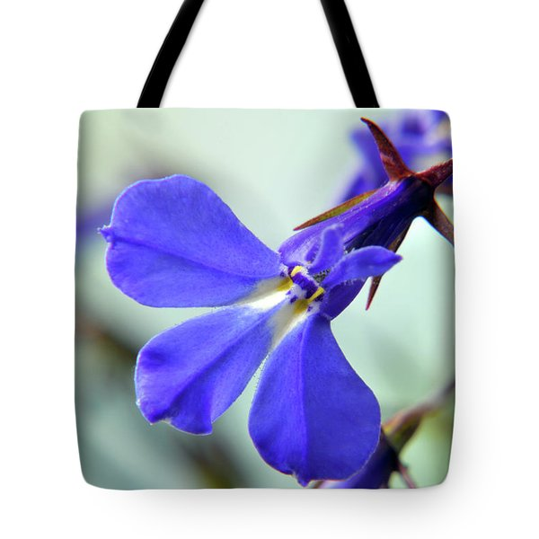 Tote Bag featuring the photograph Lobelia Erinus by Terence Davis