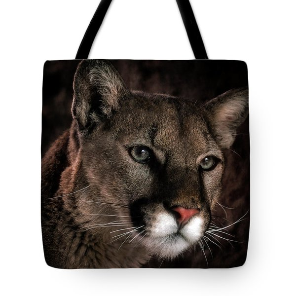 Tote Bag featuring the photograph Locked Onto Prey by Elaine Malott