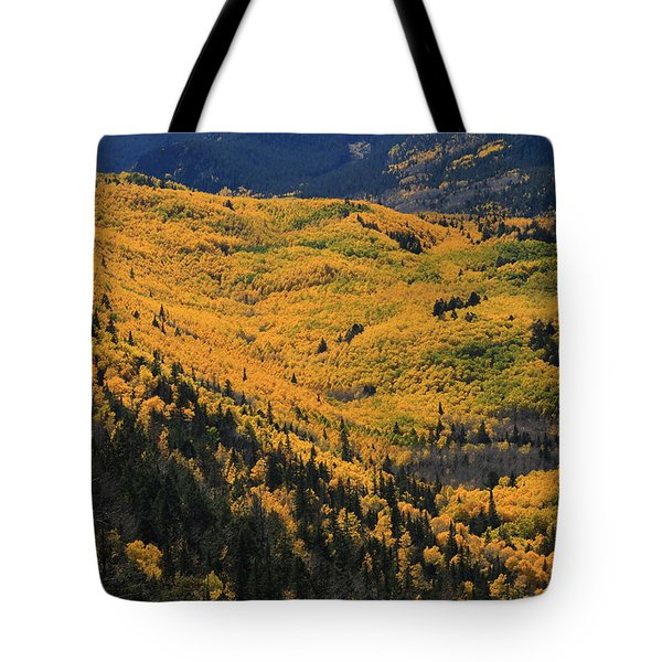 Lockett Meadow Shines Tote Bag by Tom Kelly
