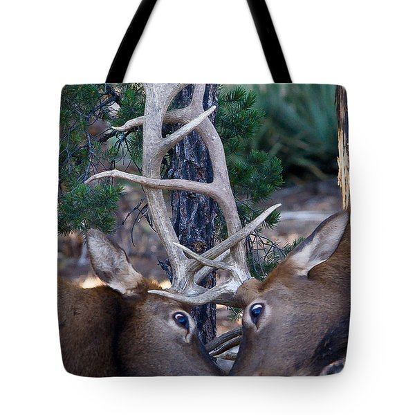 Locking Horns - Well Antlers Tote Bag