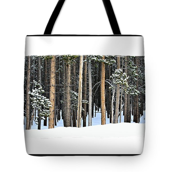 Lodge Pole Pine Tote Bag