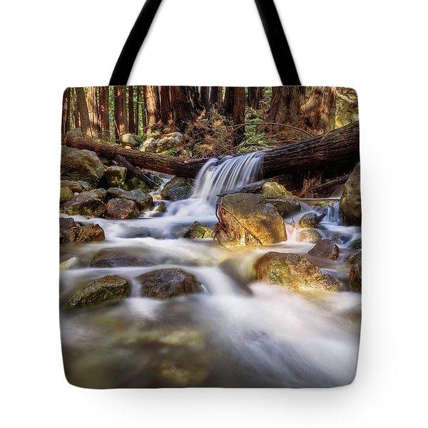 Log Falls On Limekiln Creek Tote Bag