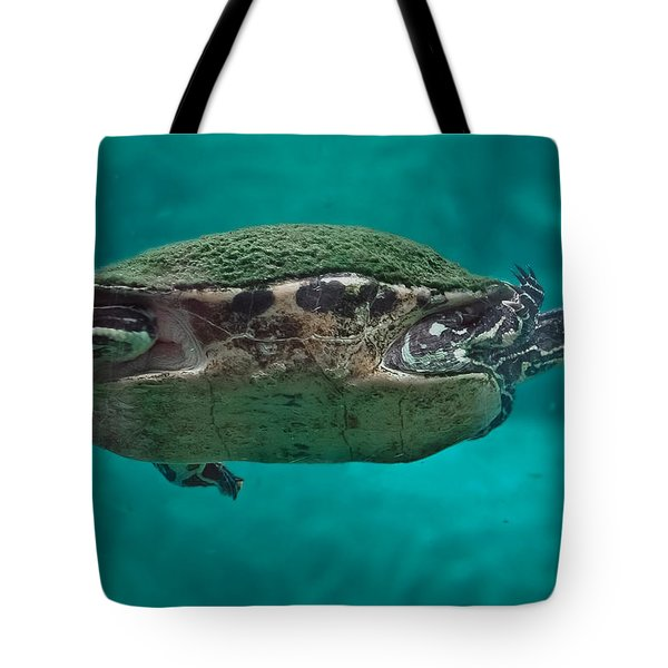 Loggerhead Plastron Tote Bag by DigiArt Diaries by Vicky B Fuller