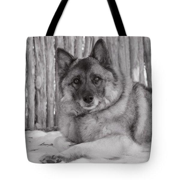 Loki By Fence Tote Bag