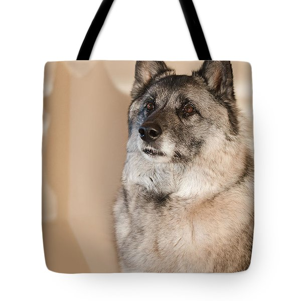 Tote Bag featuring the photograph Loki Sepia by Irina ArchAngelSkaya