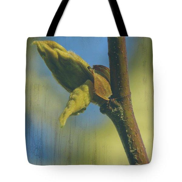 Tote Bag featuring the photograph London Plane Buds B - Platanaceae Fine Art by Jacek Wojnarowski
