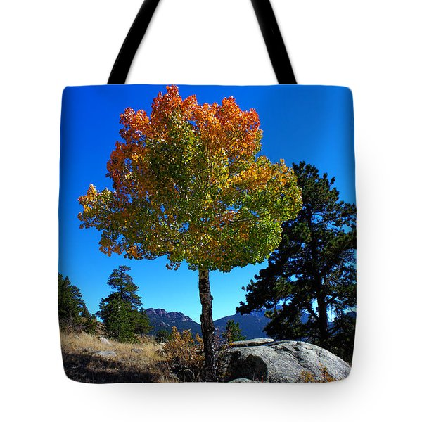 Lone Aspen Tote Bag