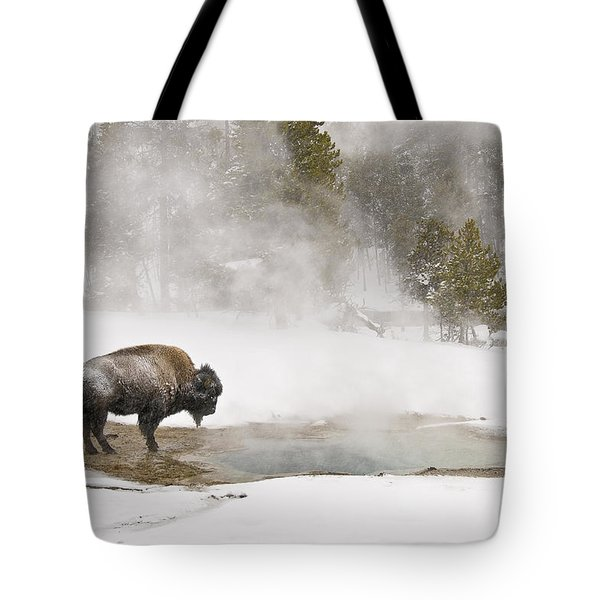 Tote Bag featuring the photograph Bison Keeping Warm by Gary Lengyel