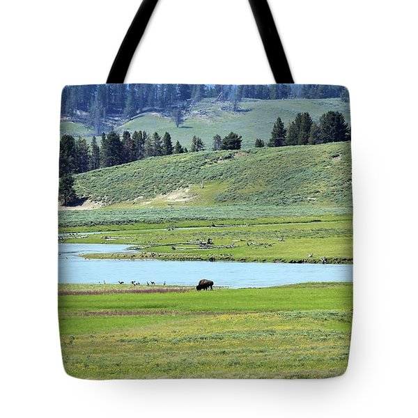 Lone Bison Out On The Prairie Tote Bag