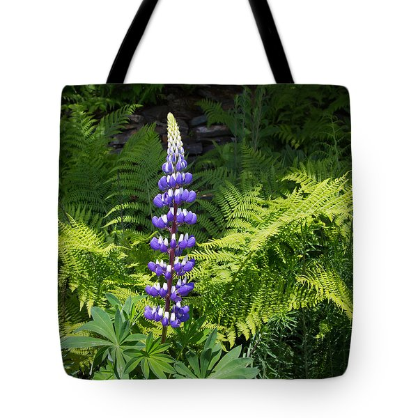 Lone Blue Lupine Tote Bag by Allan Levin