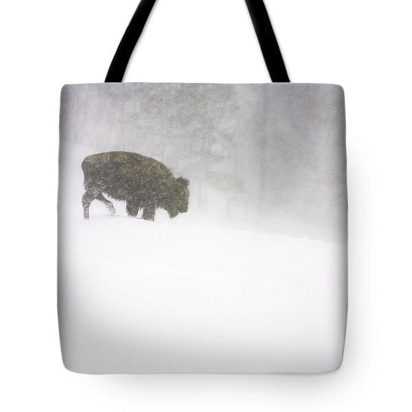 Lone Buffalo Bull In Winter Storm Tote Bag