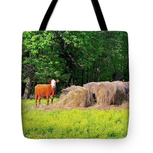 Lone Cow Guard, Smith Mountain Lake Tote Bag