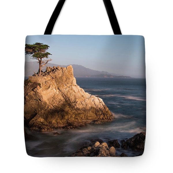lone Cypress Tree Tote Bag
