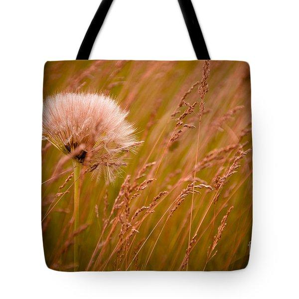 Lone Dandelion Tote Bag